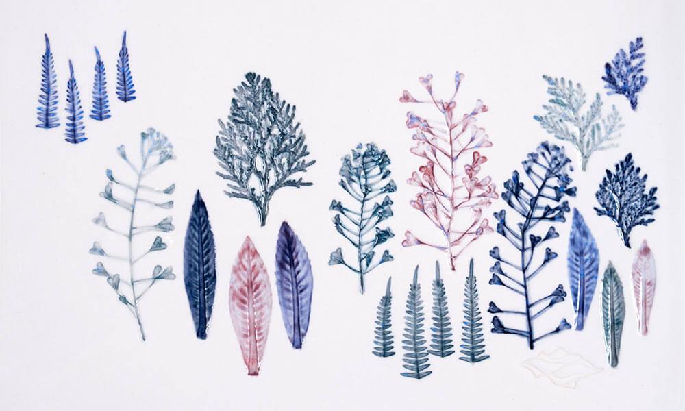 Emanuela Mastria, A Forest, 2019